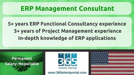 ERP Management Consultant USA Job