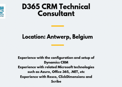 D365 CRM Technical Consultant