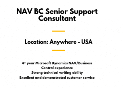 NAV BC Senior Support Consultant